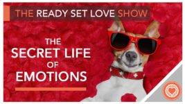 The Secret Life of Emotions